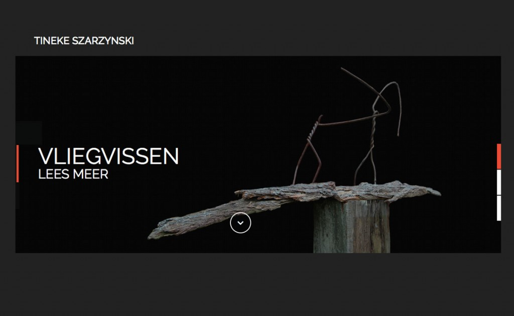 Tineke Szarzynski Website
