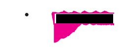 Grafisch en website bedrijf Studio Protter