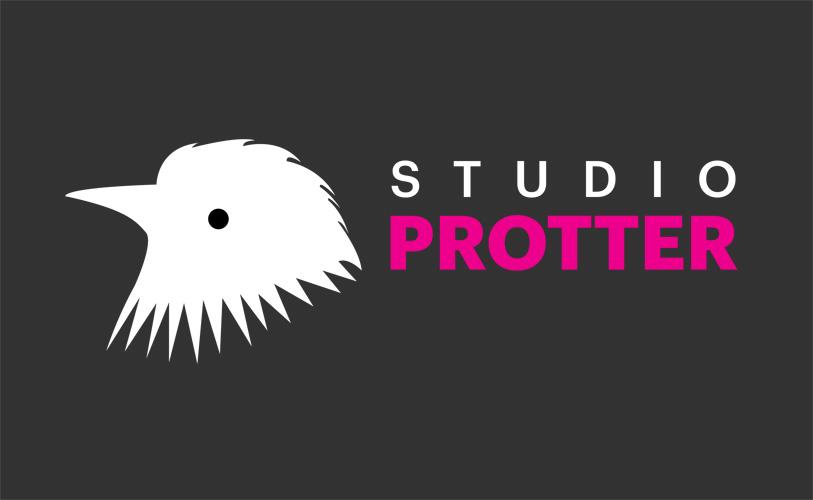Huisstijl Studio Protter