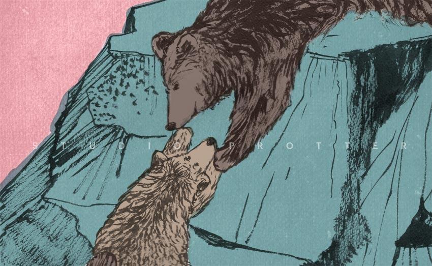 Week 23: My dear little bear
