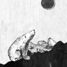 Week 37: The Bears and Solar Eclipse